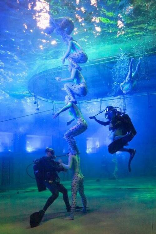 Cirque du Soleil O 3
